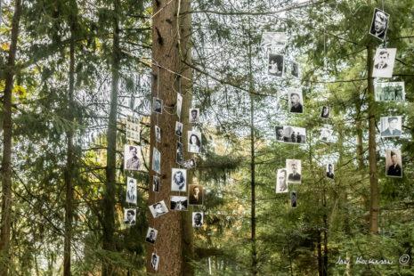Zwart-foto's van de jonge oorlogsslachtoffers